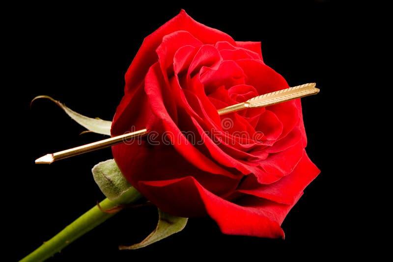 Freccia del cupid immagine stock