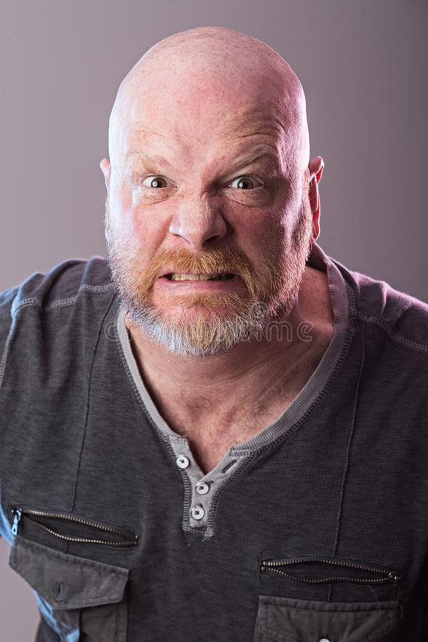 Portrait of bald man with beard stock image