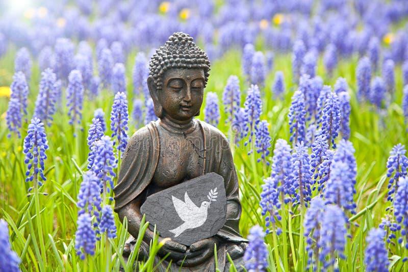fred royaltyfria bilder