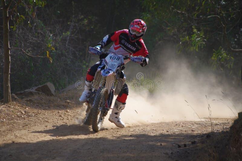 Frederico Fino photos stock