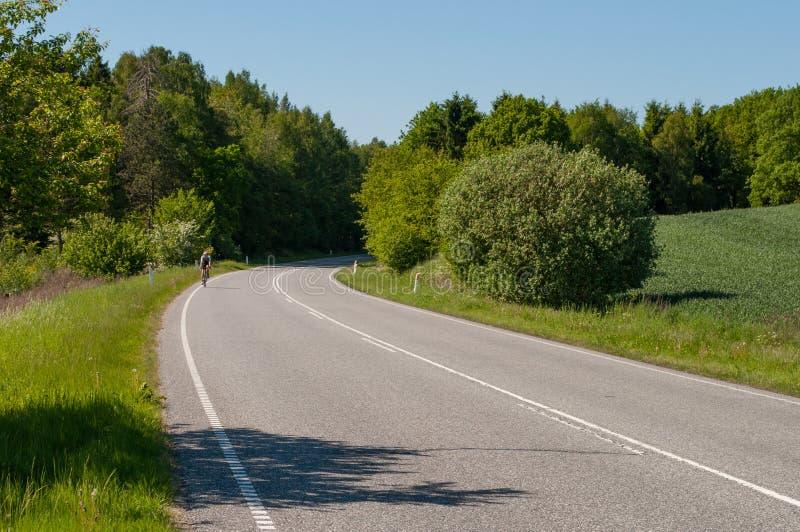 Frederiksborgvej au nord de Farum au Danemark image libre de droits