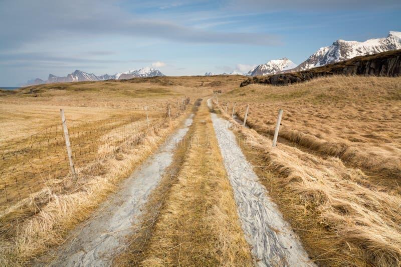 Fredvang, νησιά Lofoten, Νορβηγία στοκ εικόνα
