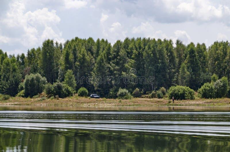 Free beach shore on Vlasina Mountain Lake in summer, Southeastern Serbia royalty free stock image