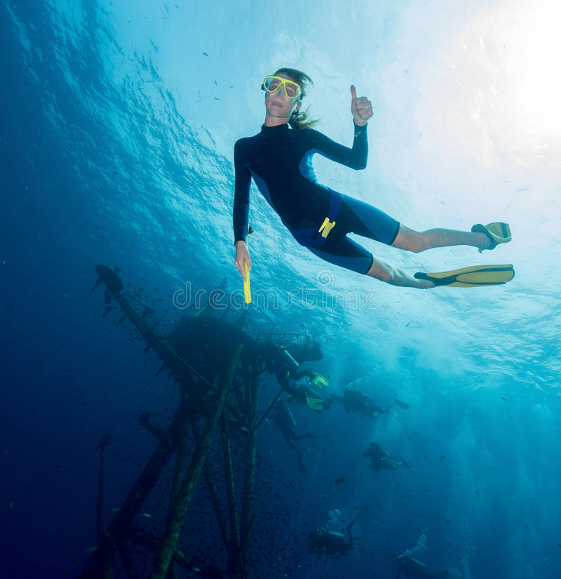 Free diver royalty free stock image