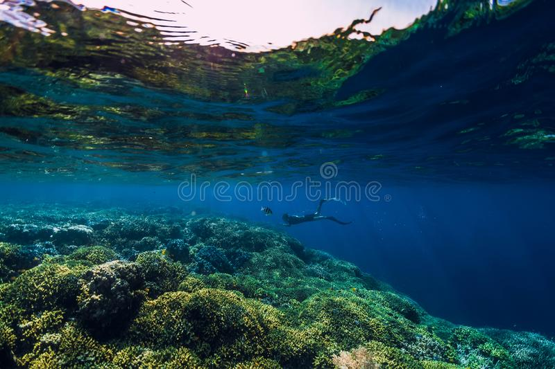 Free diver dive in deep ocean, underwater view with rocks and corals. Freediving stock image