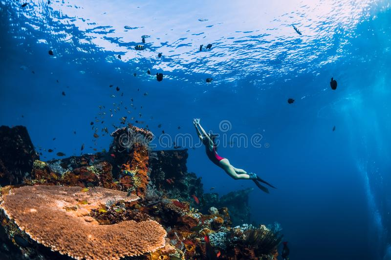 Free diver girl swimming underwater over wreck ship. royalty free stock photography