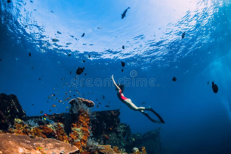 Free diver girl swimming underwater over wreck ship. stock photo