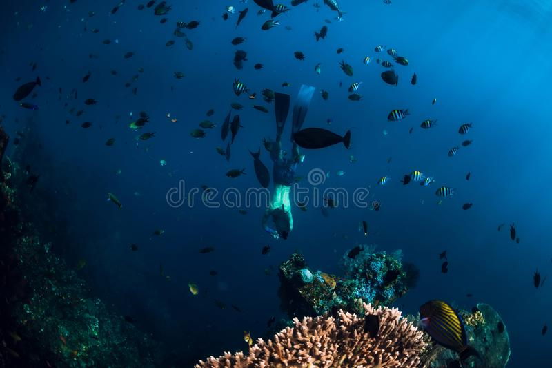 Free diver man dive underwater at shipwreck in Bali. Freediving in ocean stock photos
