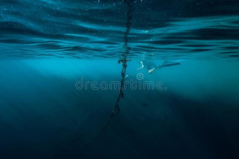 Free diver man swim in ocean royalty free stock photography