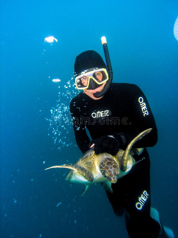 Free diver from Projeto TAMAR capturing  sea turtle stock photos