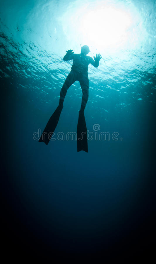 Free diver silouetted royalty free stock images