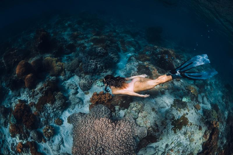 Free diver woman with fins dive to coral bottom. Freediving underwater in tropical sea stock photos