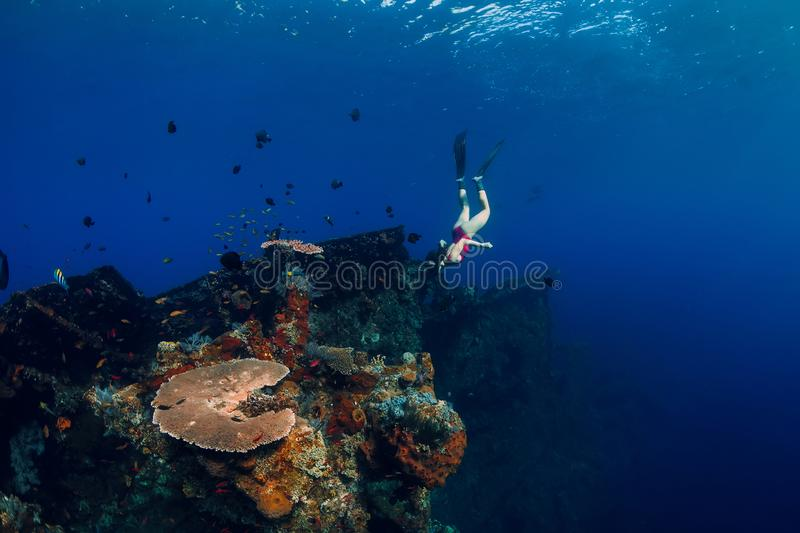Free diver woman swimming with fins at wreck ship. Freediving in ocean over corals stock image