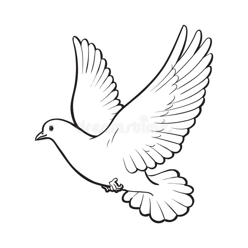 It is a graphic of Critical Realistic Dove Drawing