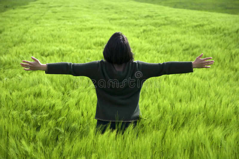 Free and happy young woman in a spring wheat field stock photo