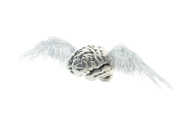 Download Free Mind Concept Stock Images - Image: 24943094