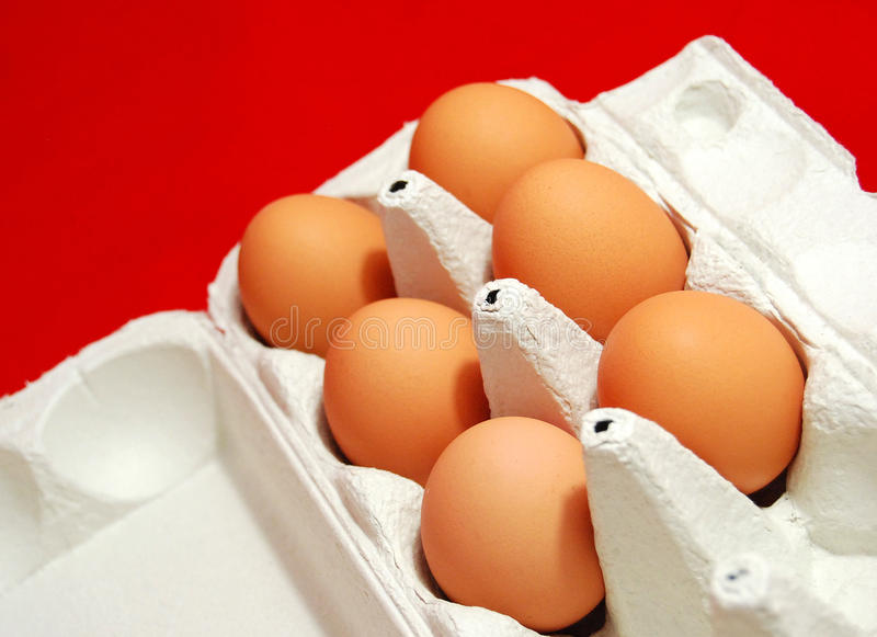 Download Free range eggs stock photo. Image of protect, eggs, shell - 10893858