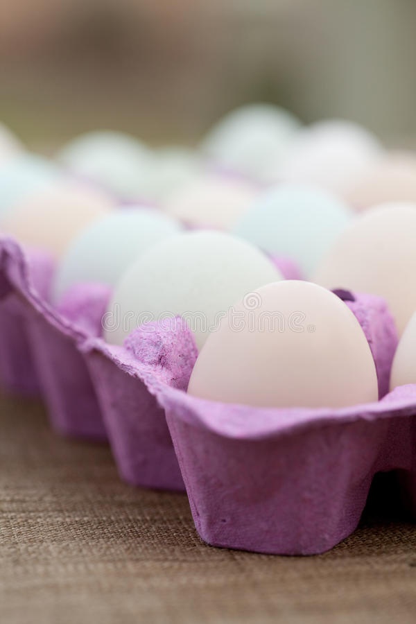Download Free Range Eggs in a Crate stock photo. Image of food - 23114902