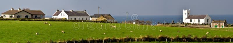 Free Range Farming Stock Images