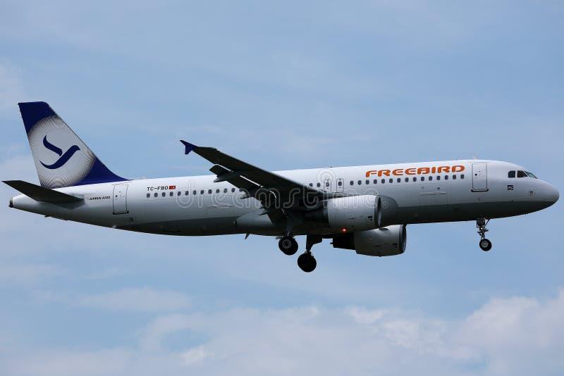 Freebirdvliegtuig die omhoog in de hemel vliegen royalty-vrije stock foto's