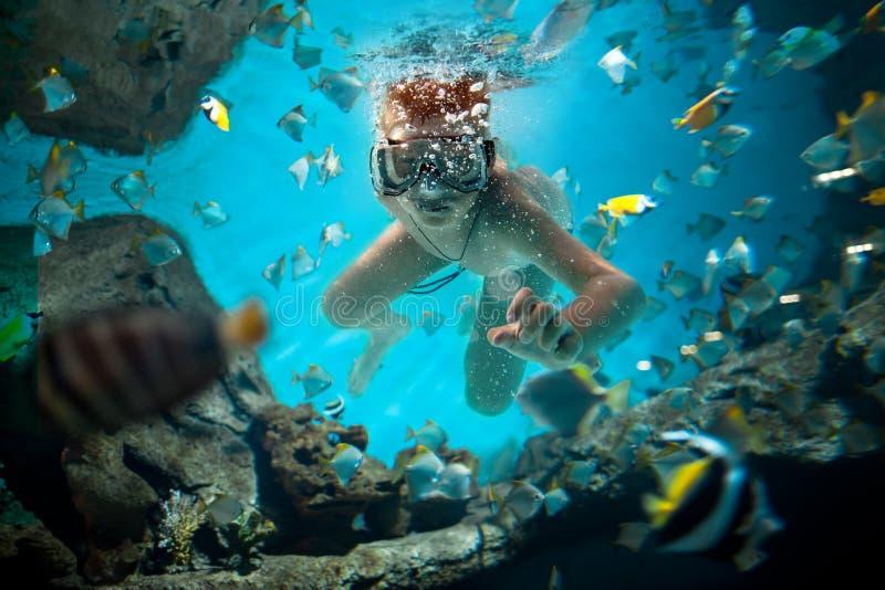 Freedive stock foto's