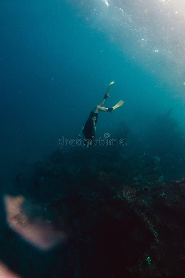 Freediver和珊瑚礁与鱼 免版税库存照片