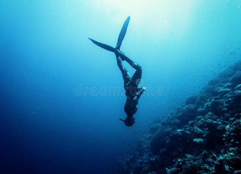 Freediver游泳在海 免版税库存照片
