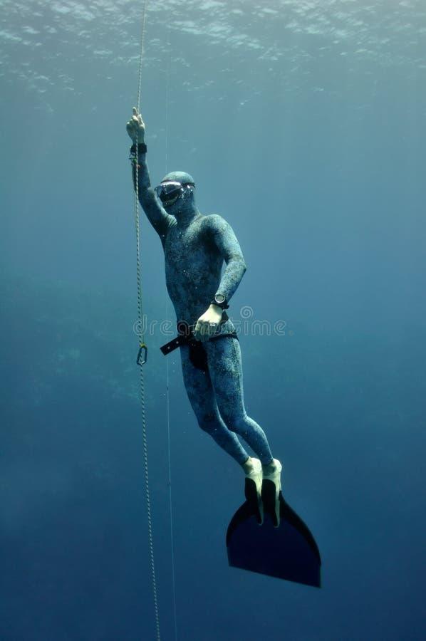 freediver глубины поднимает веревочку стоковое изображение rf