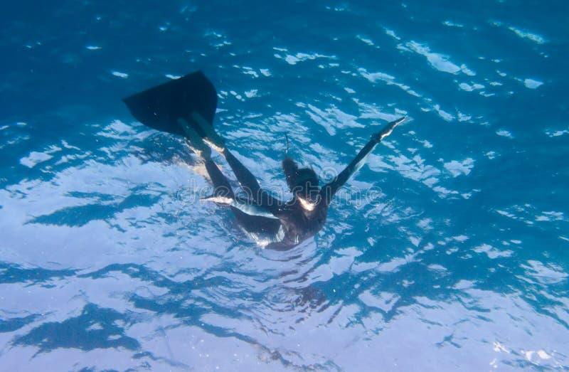 freediver летания как взгляды подводные стоковая фотография