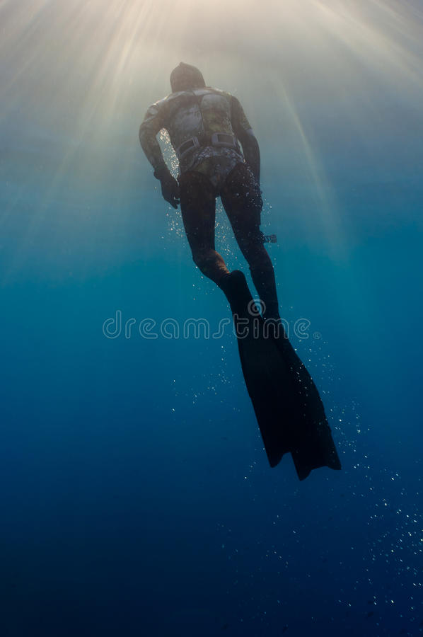 Freediver стоковые фото