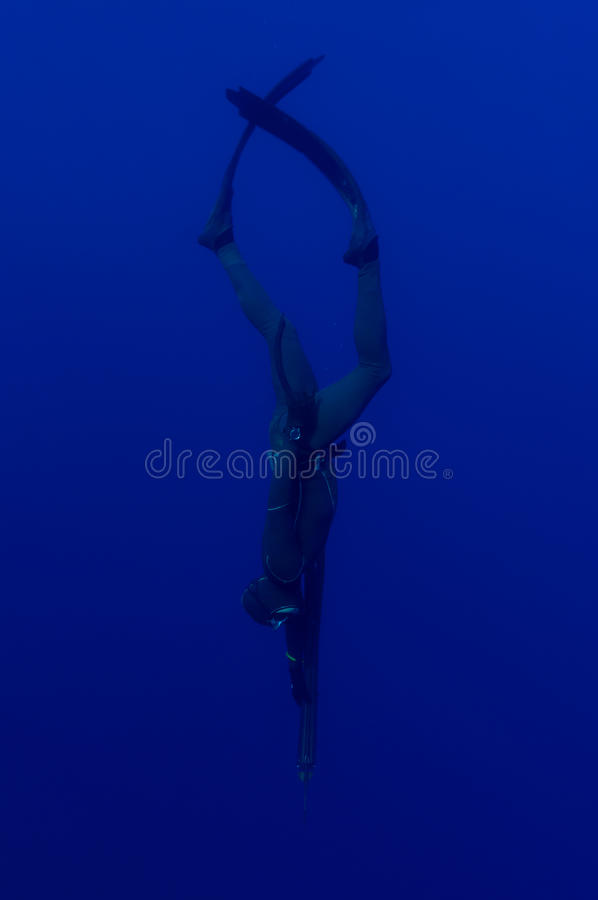 Freediver fotografia de stock royalty free