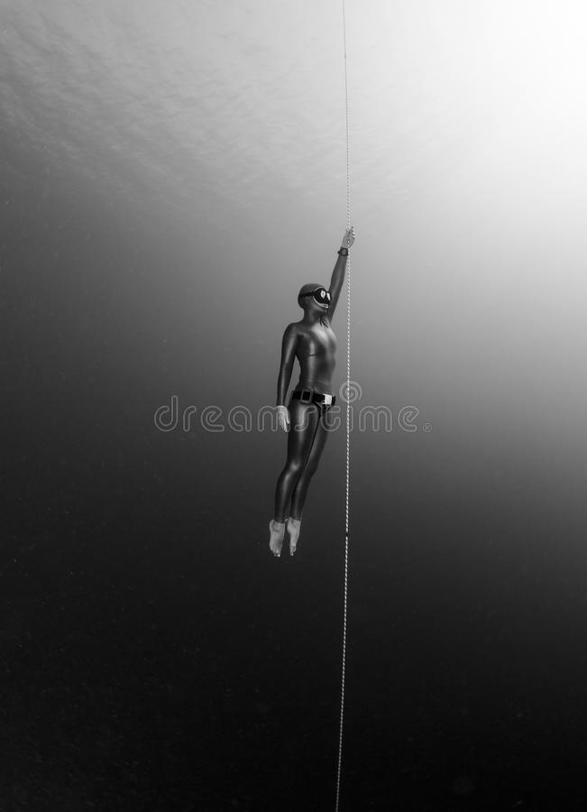 Freediver foto de stock royalty free