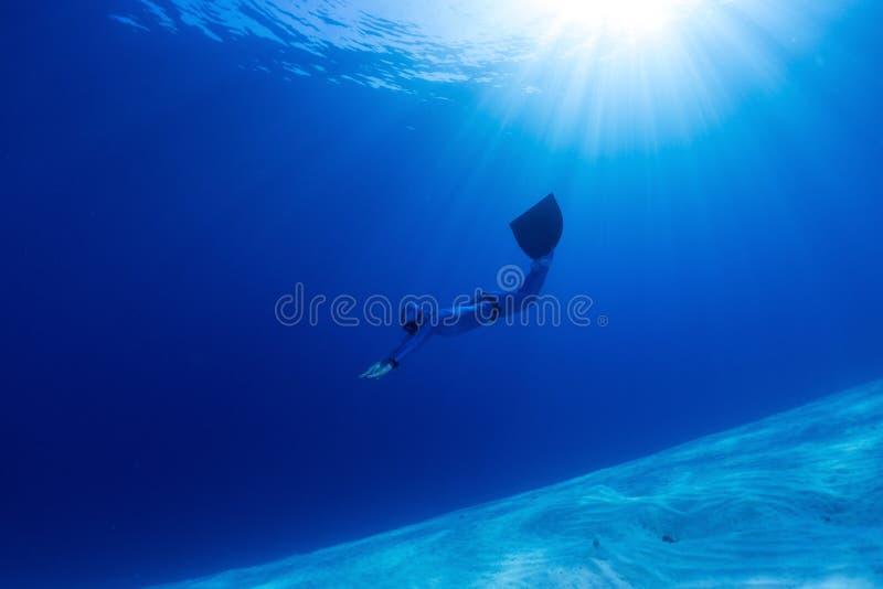 Freediver arkivbilder