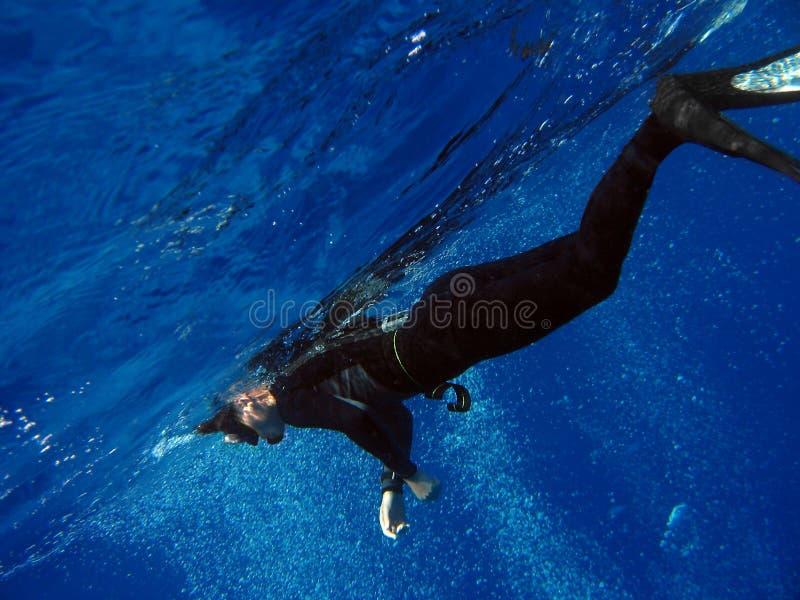 Freediver stockfotos
