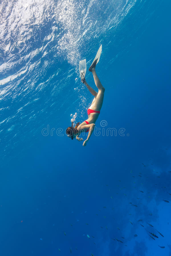 Freediver descends into Blue Water stock photography