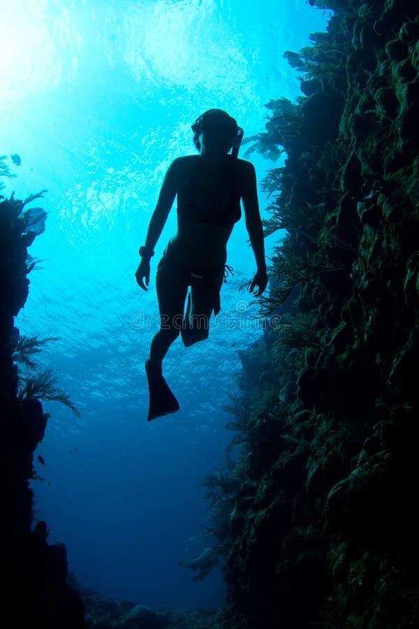 Freediver do Cararibe fotografia de stock