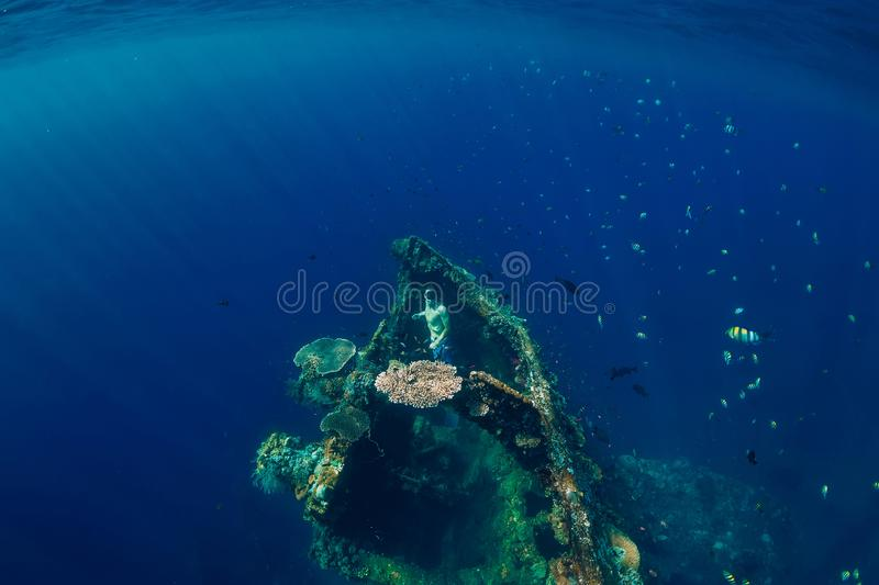 Freediver man dive underwater at shipwreck. Freediving in ocean stock images