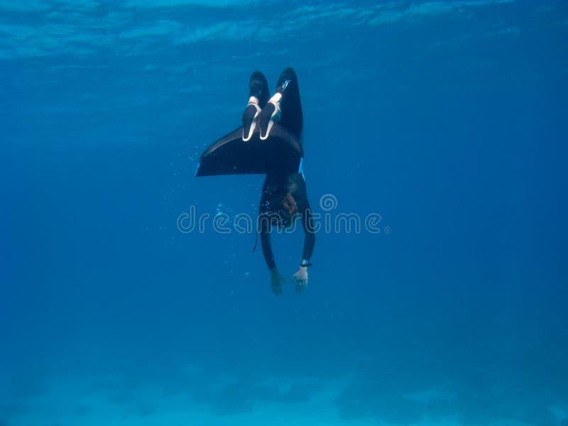 Freediver With Monofin Makes Turn Near Sea Bottom Stock Photos