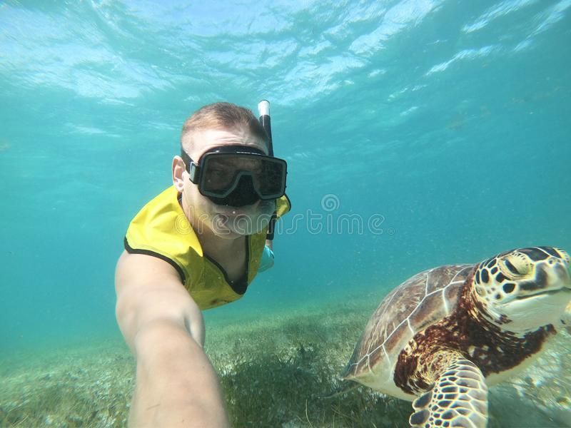 Freediver que toma o selfie com a tartaruga no mar tropical imagem de stock royalty free