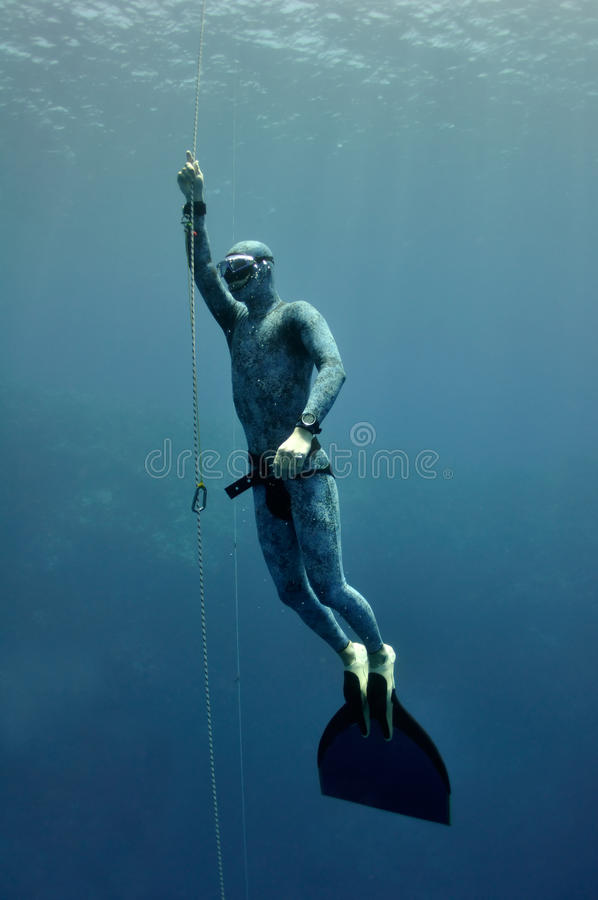 Freediver raises from the depth by rope royalty free stock image