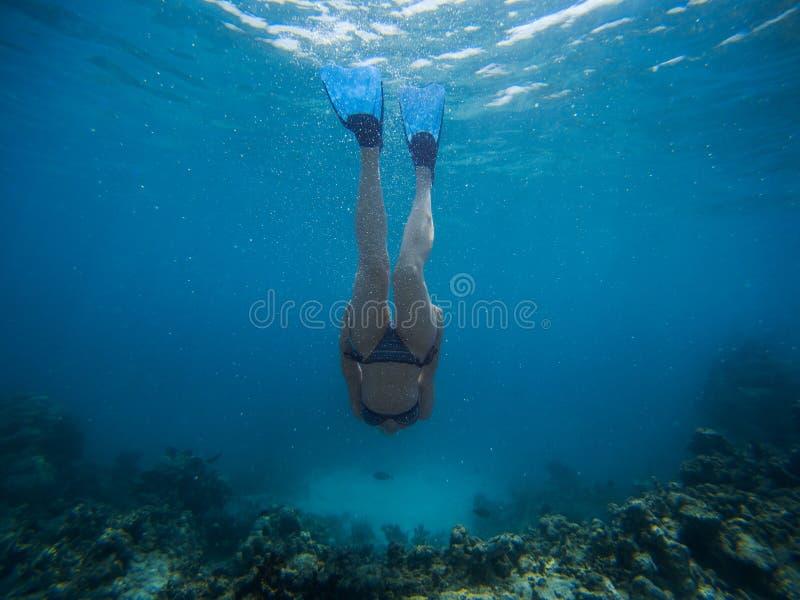 Freediver simmar den unga kvinnan undervattens- med snorkeln och flipper royaltyfria foton