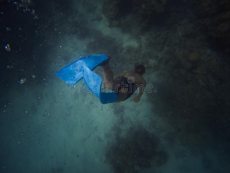 Freediver simmar den unga mannen undervattens- med snorkeln och flipper royaltyfri foto