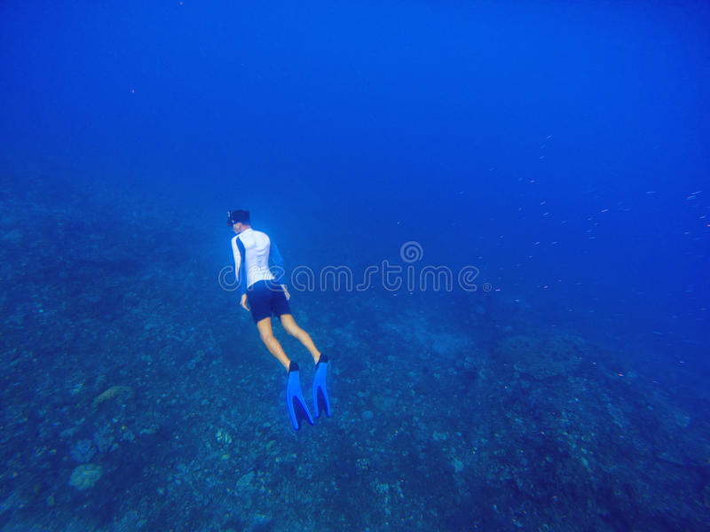 Freediver swims underwater in deep blue sea. Snorkeling man dives up to water surface. stock images