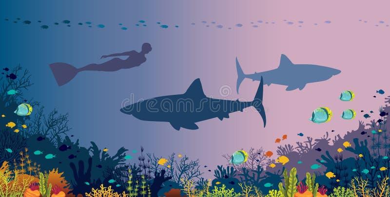 Freediver, tiburones, arrecife de coral y mar subacuático ilustración del vector