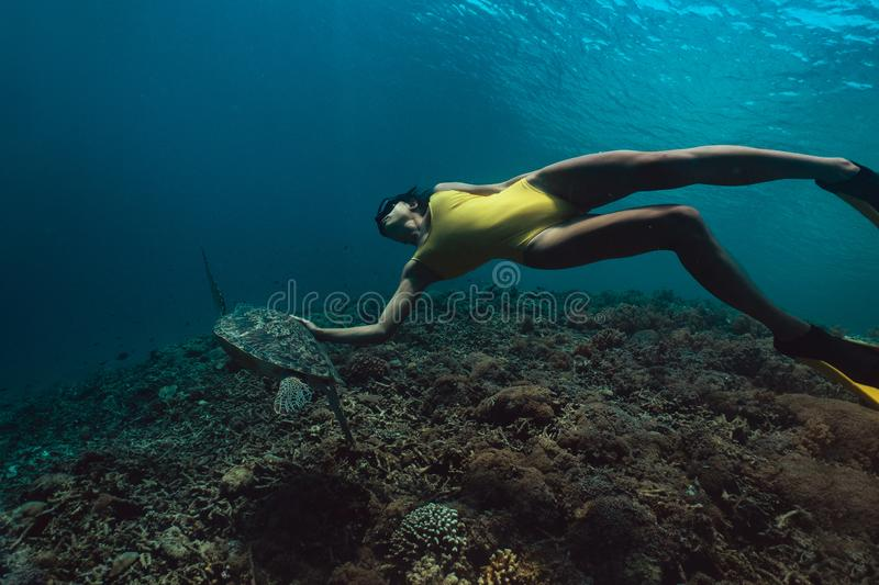 Freediver woman with turtle, underwater photography. royalty free stock photography