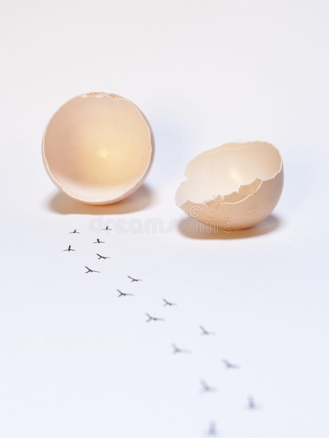 Freedom. Conceptual pic of freedom made with a broken egg and some tracks coming out of it stock photos