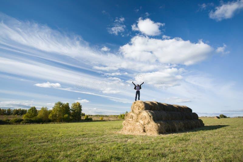 Download Freedom stock image. Image of field, blue, joyful, leisure - 25184109
