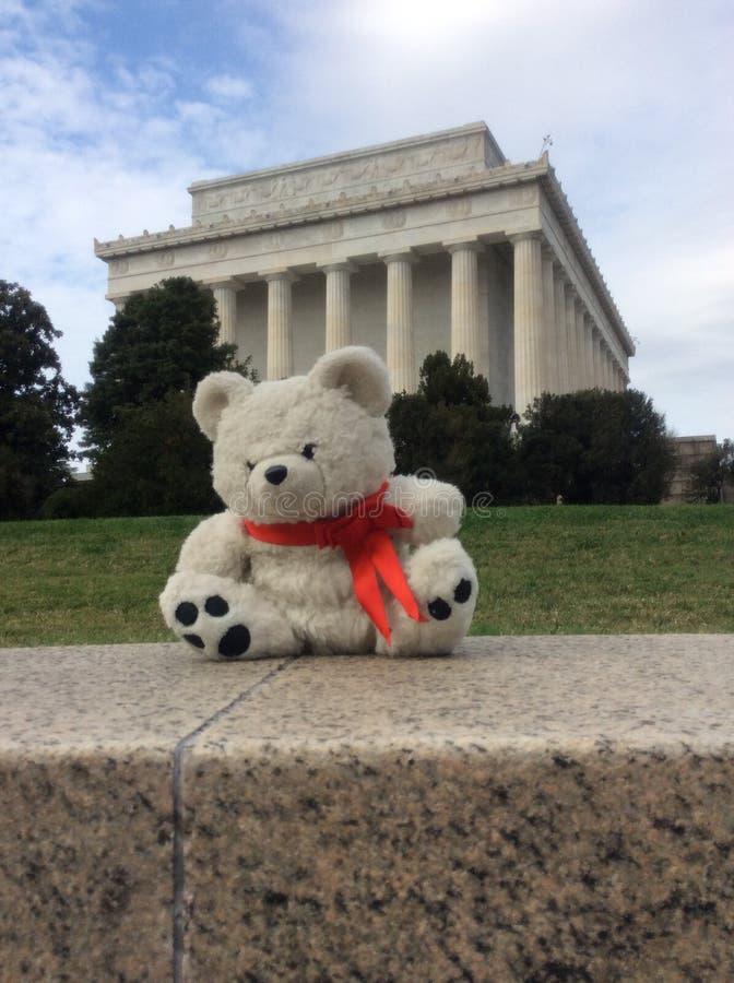 Freedom bear stock images