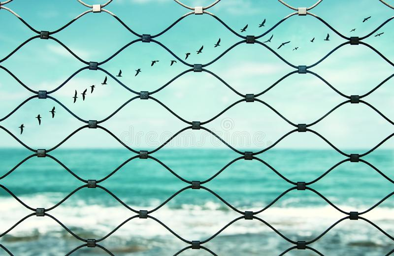 Freedom concept. image fence and old rusty lock and birds flying in the horizon. everything is possible. Freedom concept. image fence and old rusty lock and stock photography