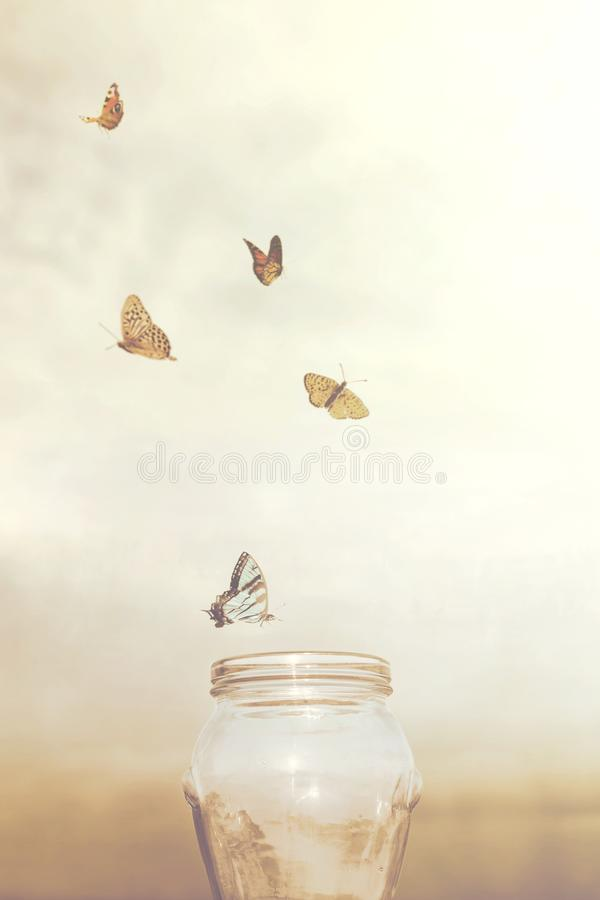 Freedom and dreamy concepts for a group of butterflies in a vase. Freedom and dreamy concepts for a group of prisoners butterflies in a vase stock images